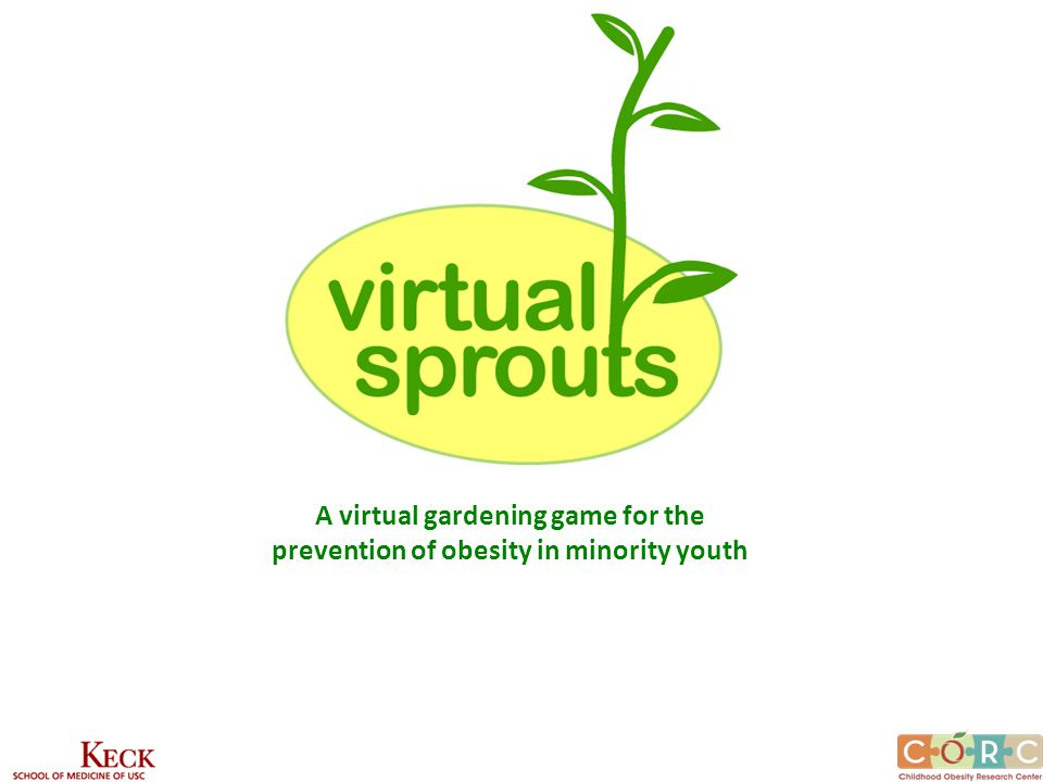 A virtual gardening game for the prevention of obesity in minority youth