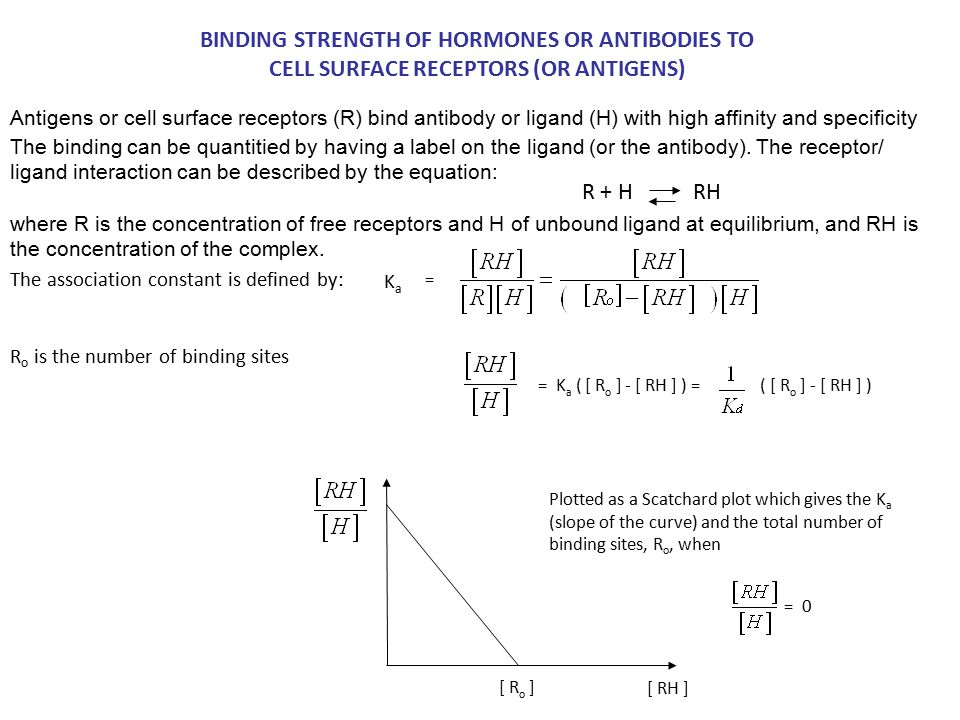 BINDING STRENGTH OF HORMONES OR ANTIBODIES TO CELL SURFACE RECEPTORS (OR ANTIGENS) Ka Ka R + H RH = = K a ( [ R o ] - [ RH ] ) = ( [ R o ] - [ RH ] )