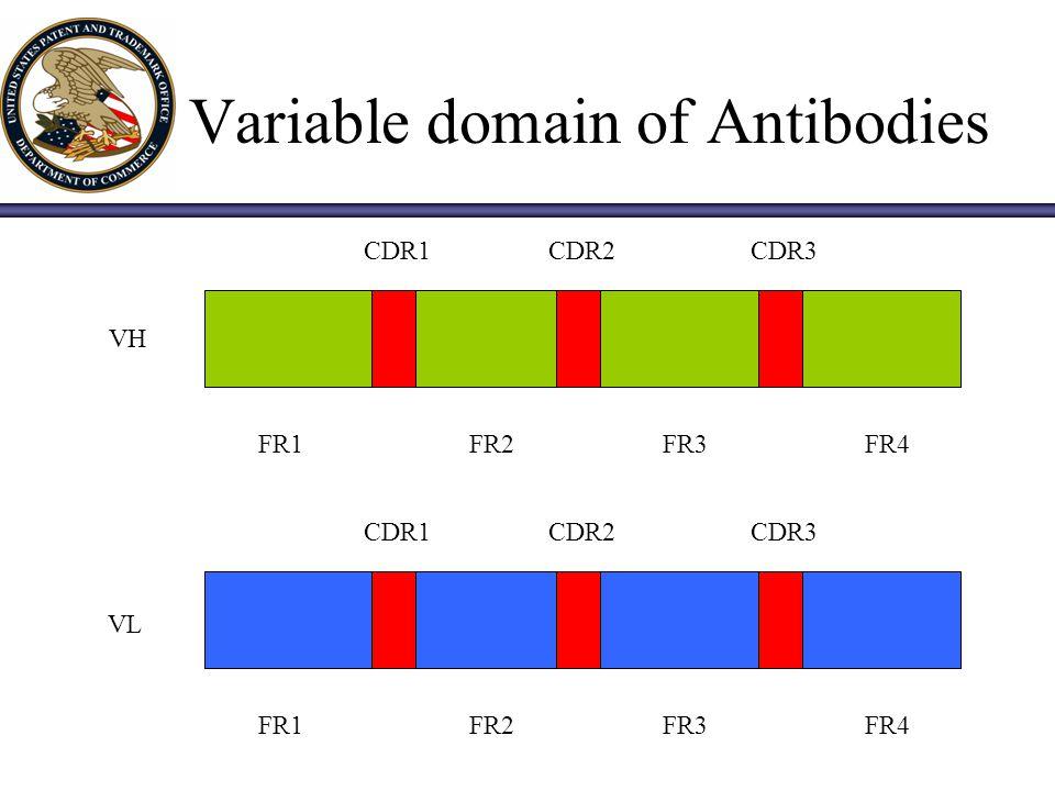 Humanization of Antibodies Mouse Chimaeric HumanizedHuman