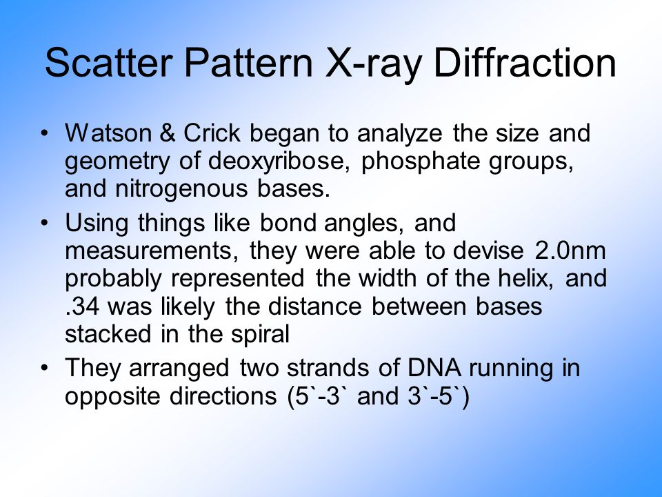 Scatter Pattern X-ray Diffraction Watson & Crick began to analyze the size and geometry of deoxyribose, phosphate groups, and nitrogenous bases.