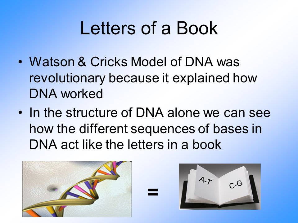 Letters of a Book Watson & Cricks Model of DNA was revolutionary because it explained how DNA worked In the structure of DNA alone we can see how the different sequences of bases in DNA act like the letters in a book = A-T C-G