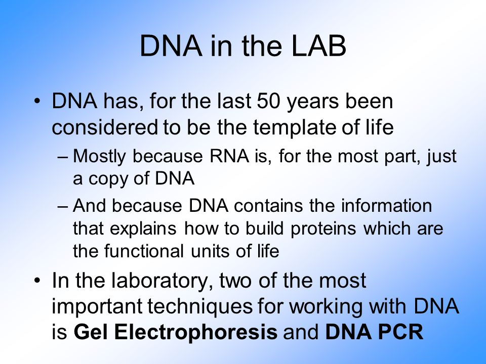 DNA in the LAB DNA has, for the last 50 years been considered to be the template of life –Mostly because RNA is, for the most part, just a copy of DNA –And because DNA contains the information that explains how to build proteins which are the functional units of life In the laboratory, two of the most important techniques for working with DNA is Gel Electrophoresis and DNA PCR