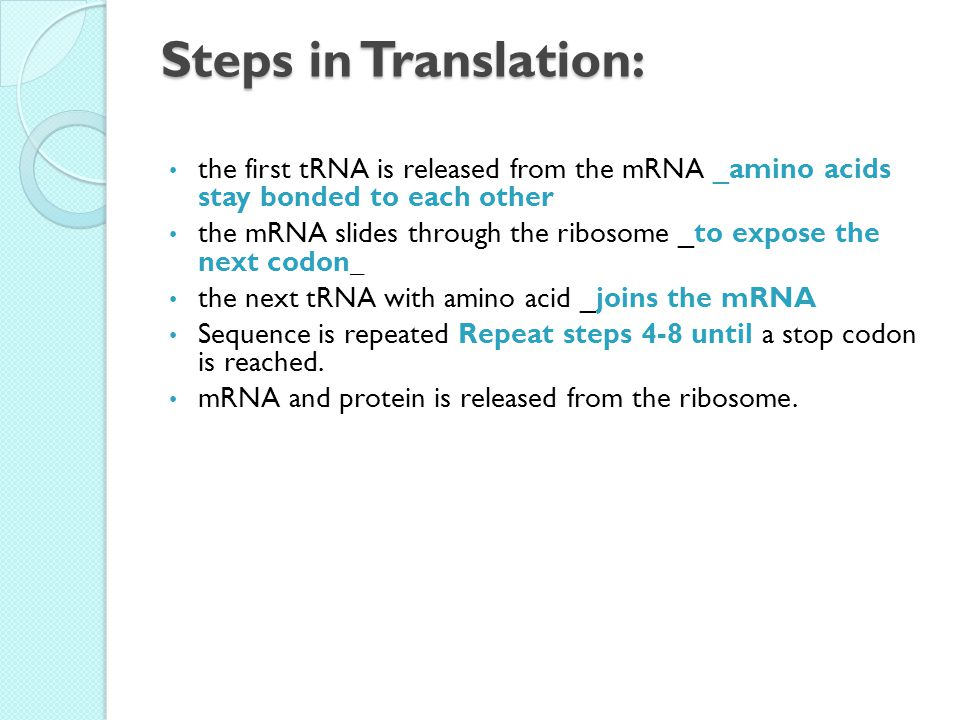 Steps in Translation: the first tRNA is released from the mRNA _amino acids stay bonded to each other the mRNA slides through the ribosome _to expose the next codon_ the next tRNA with amino acid _joins the mRNA Sequence is repeated Repeat steps 4-8 until a stop codon is reached.