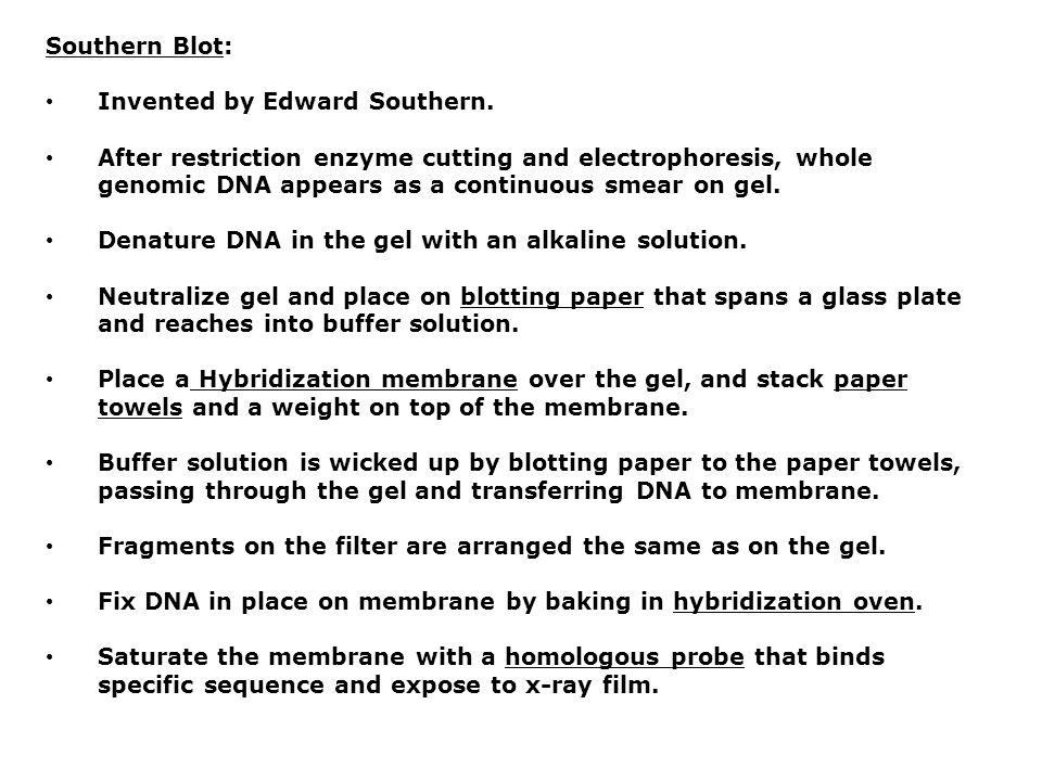 Southern Blot: Invented by Edward Southern.