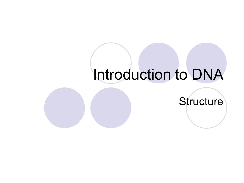 Introduction to DNA Structure
