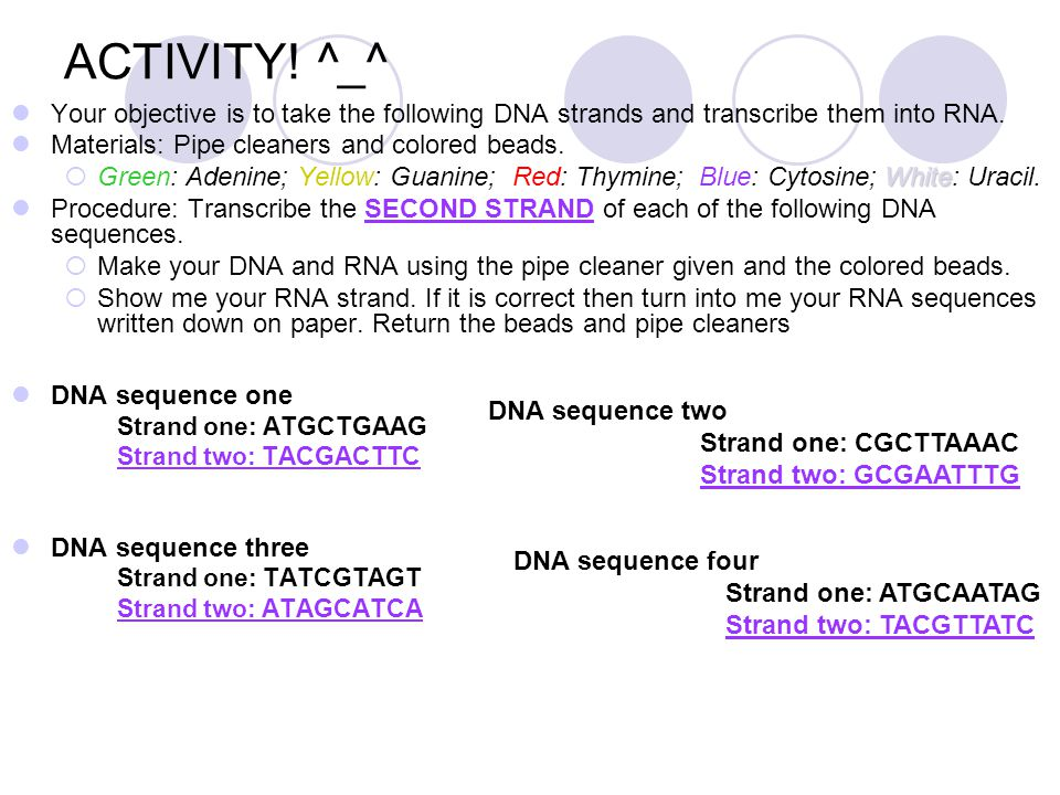 ACTIVITY! ^_^ Your objective is to take the following DNA strands and transcribe them into RNA. Materials: Pipe cleaners and colored beads. White  Gr
