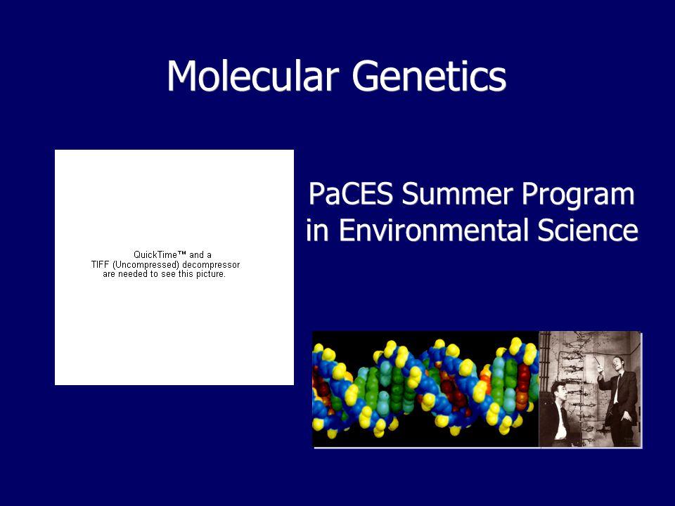Molecular Genetics PaCES Summer Program in Environmental Science