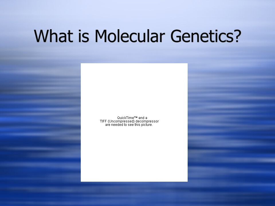 What is Molecular Genetics?