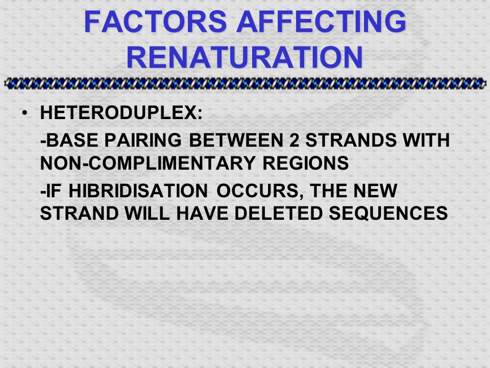 FACTORS AFFECTING RENATURATION HETERODUPLEX: -BASE PAIRING BETWEEN 2 STRANDS WITH NON-COMPLIMENTARY REGIONS -IF HIBRIDISATION OCCURS, THE NEW STRAND WILL HAVE DELETED SEQUENCES
