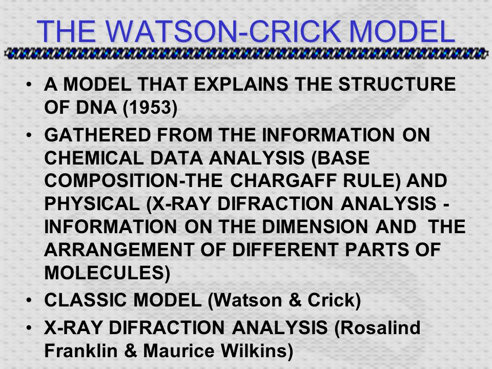THE WATSON-CRICK MODEL A MODEL THAT EXPLAINS THE STRUCTURE OF DNA (1953) GATHERED FROM THE INFORMATION ON CHEMICAL DATA ANALYSIS (BASE COMPOSITION-THE CHARGAFF RULE) AND PHYSICAL (X-RAY DIFRACTION ANALYSIS - INFORMATION ON THE DIMENSION AND THE ARRANGEMENT OF DIFFERENT PARTS OF MOLECULES) CLASSIC MODEL (Watson & Crick) X-RAY DIFRACTION ANALYSIS (Rosalind Franklin & Maurice Wilkins)
