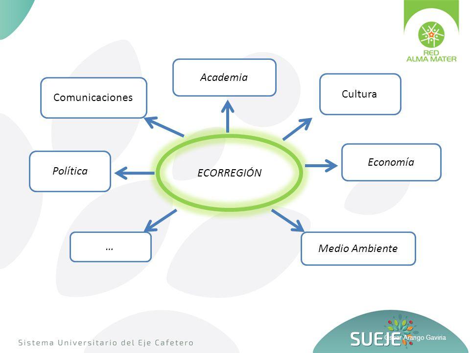 Oscar Arango Gaviria Academia Política ECORREGIÓN Economía Medio Ambiente Comunicaciones Cultura …