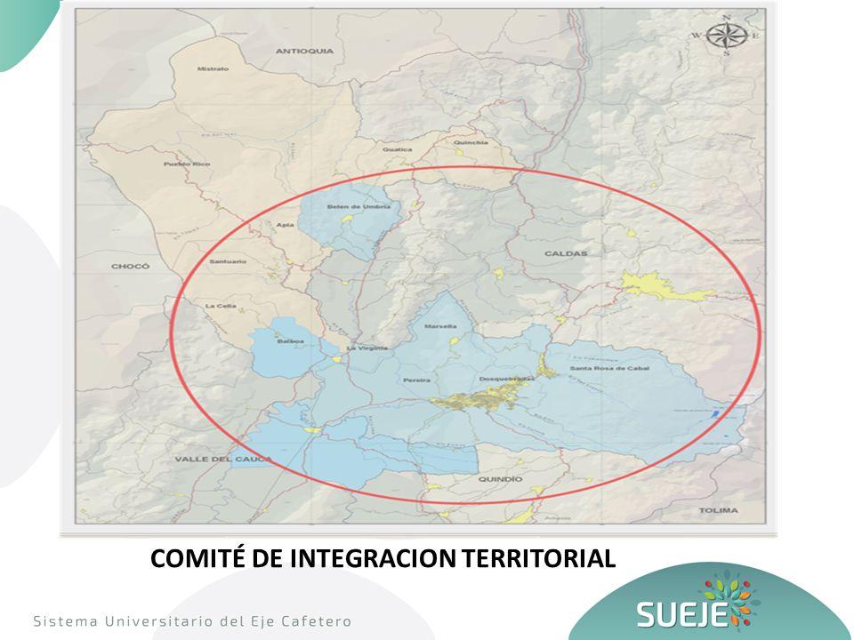 COMITÉ DE INTEGRACION TERRITORIAL