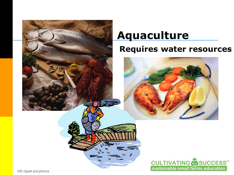 Aquaculture Requires water resources MS clipart and photos