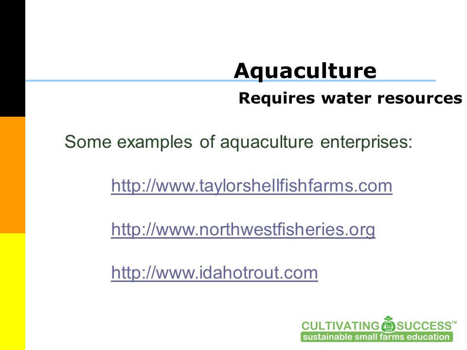 Aquaculture Requires water resources Some examples of aquaculture enterprises: http://www.taylorshellfishfarms.com http://www.northwestfisheries.org http://www.idahotrout.com