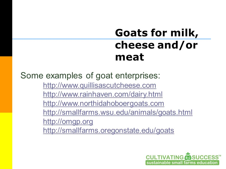 Goats for milk, cheese and/or meat Some examples of goat enterprises: http://www.quillisascutcheese.com http://www.rainhaven.com/dairy.html http://www.northidahoboergoats.com http://smallfarms.wsu.edu/animals/goats.html http://omgp.org http://smallfarms.oregonstate.edu/goats