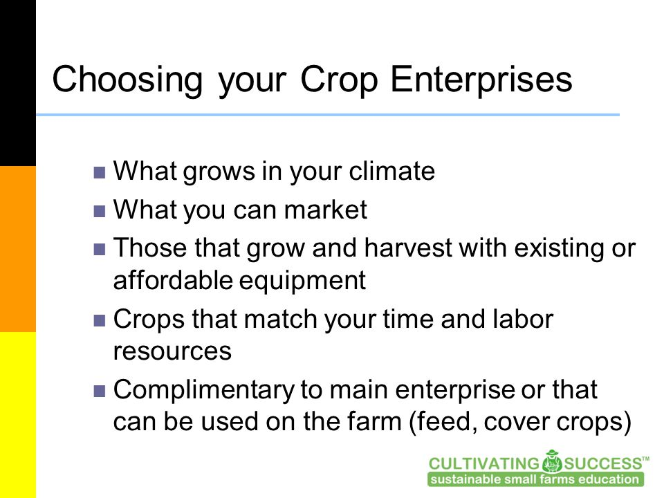 Choosing your Crop Enterprises What grows in your climate What you can market Those that grow and harvest with existing or affordable equipment Crops that match your time and labor resources Complimentary to main enterprise or that can be used on the farm (feed, cover crops)