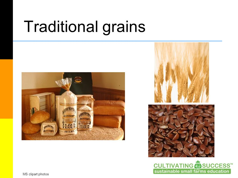 Traditional grains MS clipart photos