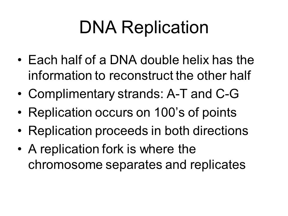 DNA Replication Each half of a DNA double helix has the information to reconstruct the other half Complimentary strands: A-T and C-G Replication occurs on 100's of points Replication proceeds in both directions A replication fork is where the chromosome separates and replicates