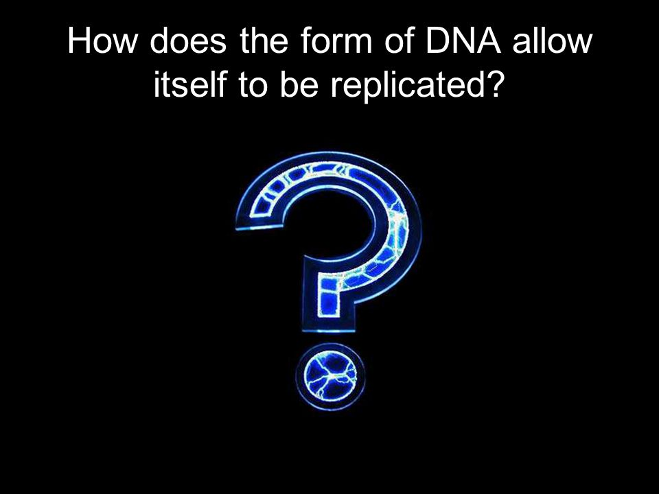 How does the form of DNA allow itself to be replicated