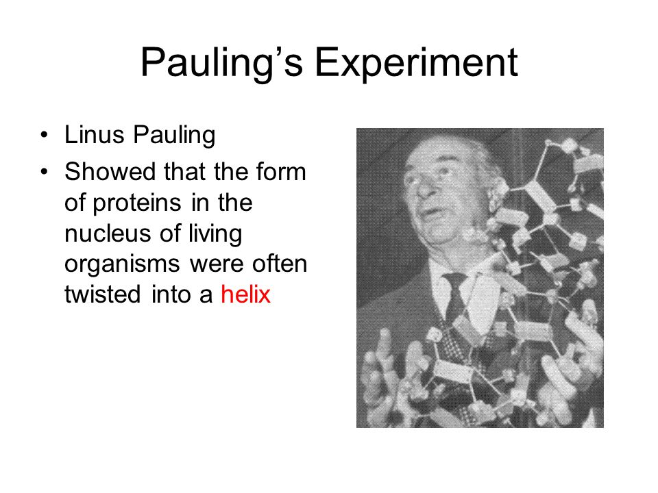 Pauling's Experiment Linus Pauling Showed that the form of proteins in the nucleus of living organisms were often twisted into a helix