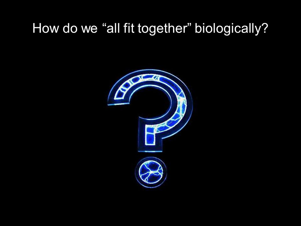 How do we all fit together biologically