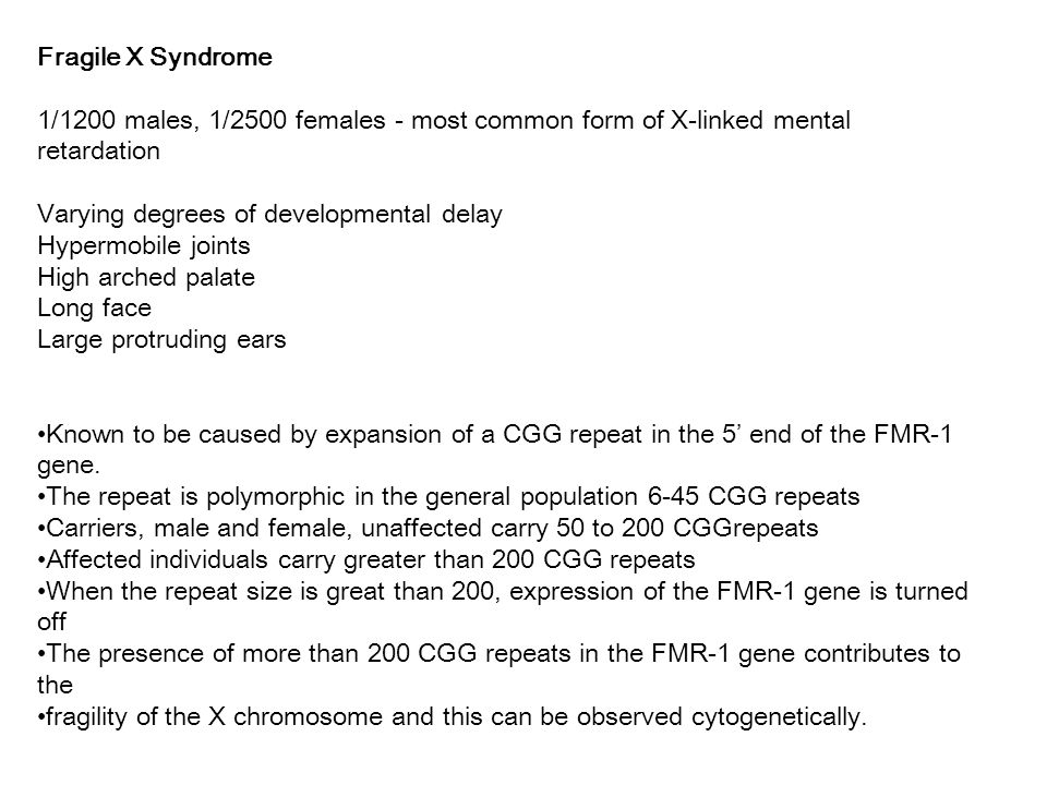 Fragile X Syndrome 1/1200 males, 1/2500 females - most common form of X-linked mental retardation Varying degrees of developmental delay Hypermobile joints High arched palate Long face Large protruding ears Known to be caused by expansion of a CGG repeat in the 5' end of the FMR-1 gene.