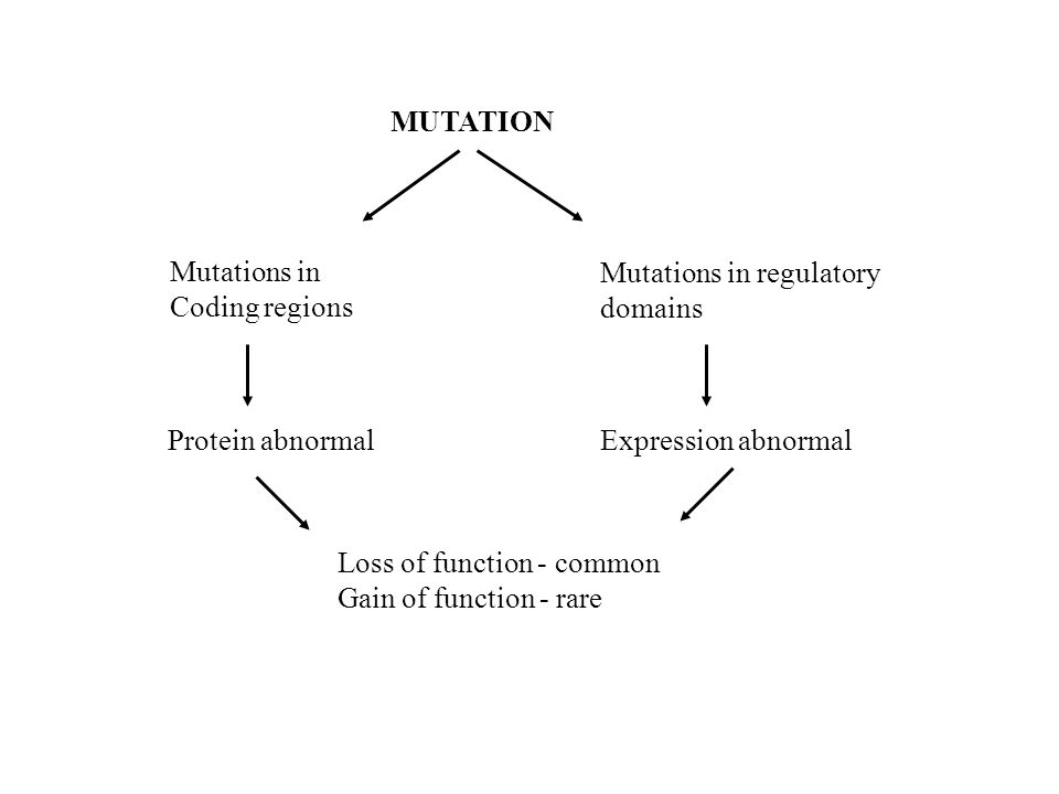 MUTATION Mutations in Coding regions Mutations in regulatory domains Protein abnormalExpression abnormal Loss of function - common Gain of function - rare