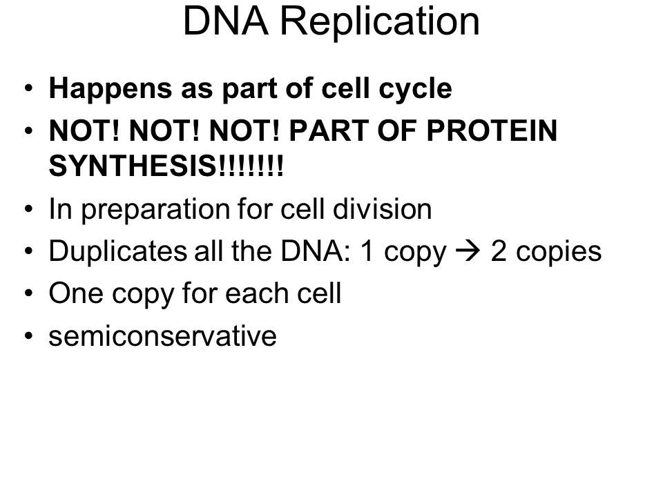 DNA Replication Happens as part of cell cycle NOT.
