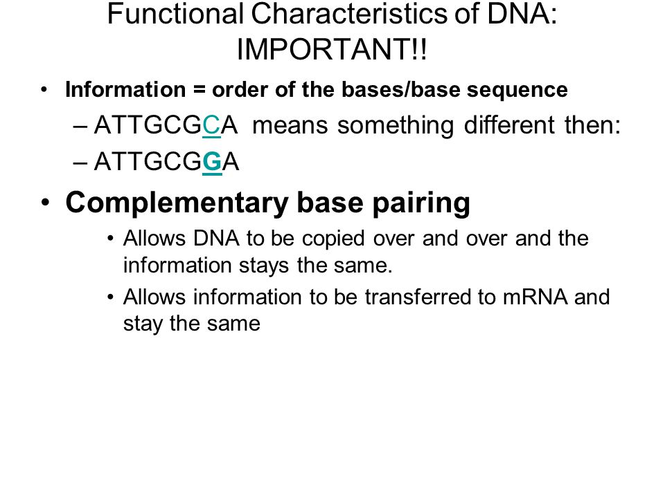 Functional Characteristics of DNA: IMPORTANT!.