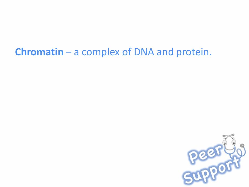 Chromatin – a complex of DNA and protein.