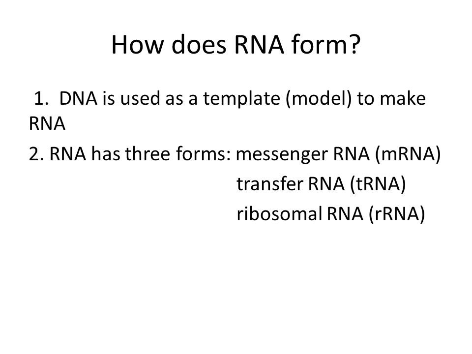 How does RNA form. 1. DNA is used as a template (model) to make RNA 2.