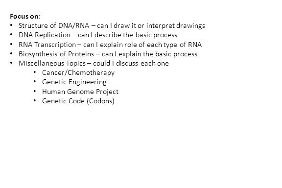 Focus on: Structure of DNA/RNA – can I draw it or interpret drawings DNA Replication – can I describe the basic process RNA Transcription – can I explain role of each type of RNA Biosynthesis of Proteins – can I explain the basic process Miscellaneous Topics – could I discuss each one Cancer/Chemotherapy Genetic Engineering Human Genome Project Genetic Code (Codons)