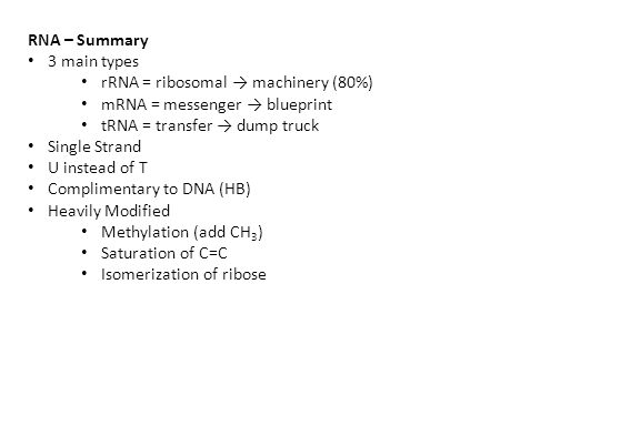 RNA – Summary 3 main types rRNA = ribosomal → machinery (80%) mRNA = messenger → blueprint tRNA = transfer → dump truck Single Strand U instead of T Complimentary to DNA (HB) Heavily Modified Methylation (add CH 3 ) Saturation of C=C Isomerization of ribose