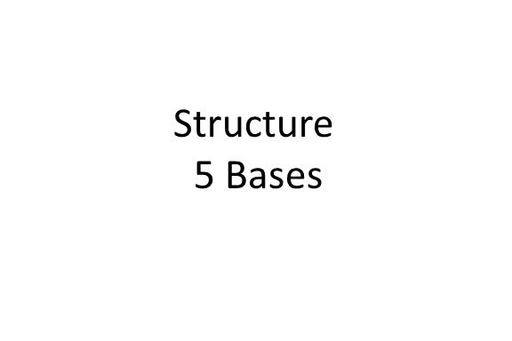 Structure 5 Bases