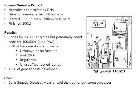 Human Genome Project: Heredity is controlled by DNA Genetic Diseases effect 8% humans Started 1998 → Map 3 billion base pairs Finished 2001.