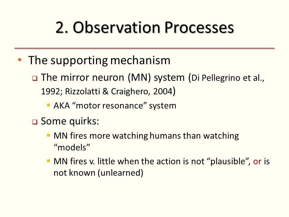 2. Observation Processes The supporting mechanism  The mirror neuron (MN) system ( Di Pellegrino et al., 1992; Rizzolatti & Craighero, 2004 )  AKA ""