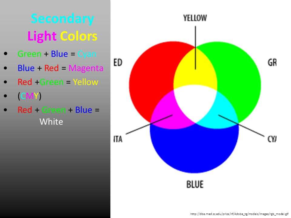 Secondary Light Colors Green + Blue = Cyan Blue + Red = Magenta Red +Green = Yellow (CMY) Red + Green + Blue = White http://dba.med.sc.edu/price/irf/Adobe_tg/models/images/rgb_model.gif