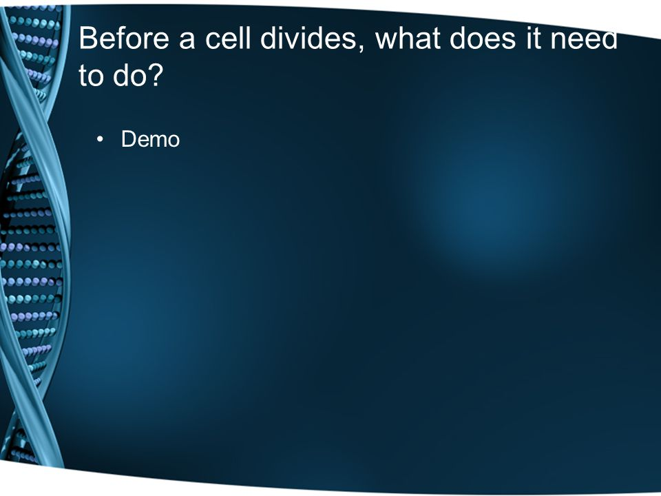 Before a cell divides, what does it need to do Demo