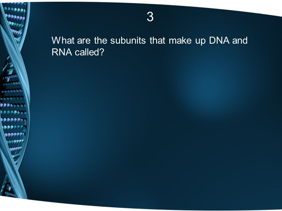 3 What are the subunits that make up DNA and RNA called
