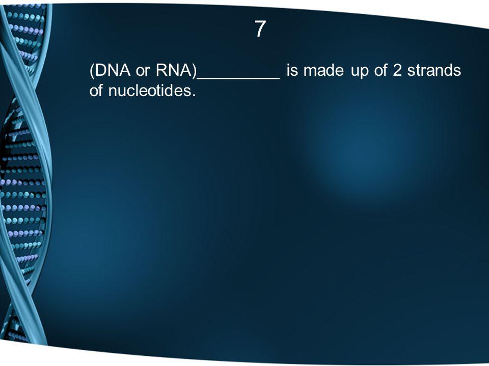 7 (DNA or RNA)_________ is made up of 2 strands of nucleotides.