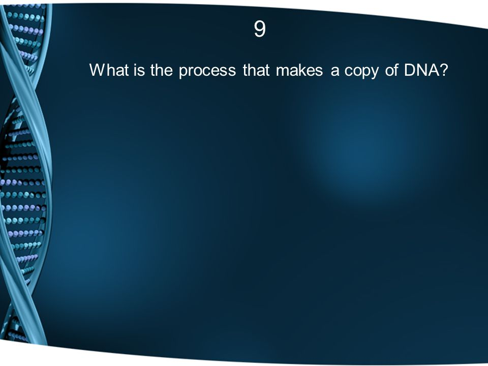 9 What is the process that makes a copy of DNA