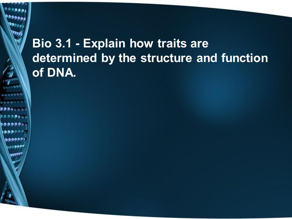 DNA and RNA are both made up of _______________which contain a __________,___________, and a __________________.