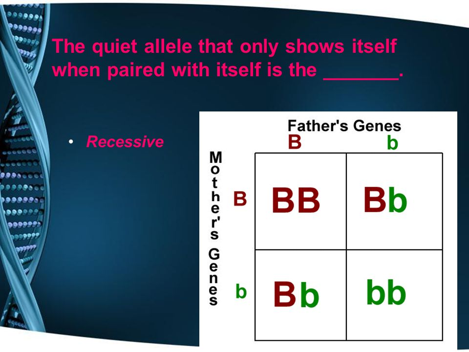 An organisms genetic make-up (actual genes) is its ______________. genotype