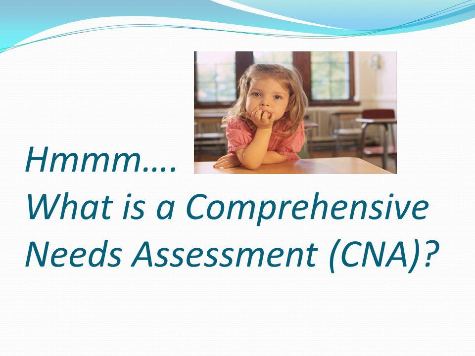 Hmmm…. What is a Comprehensive Needs Assessment (CNA)?