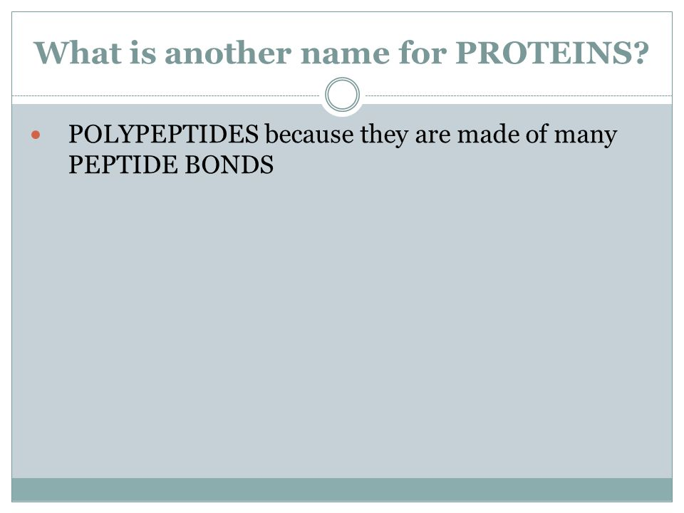 What is another name for PROTEINS? POLYPEPTIDES because they are made of many PEPTIDE BONDS
