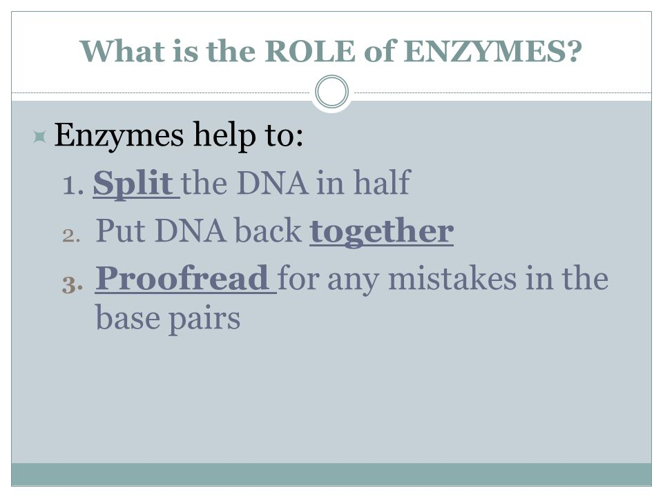 What is the ROLE of ENZYMES. Enzymes help to: 1.
