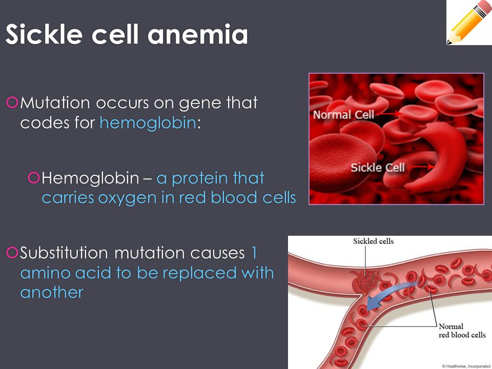  Mutation occurs on gene that codes for hemoglobin:  Hemoglobin – a protein that carries oxygen in red blood cells  Substitution mutation causes 1