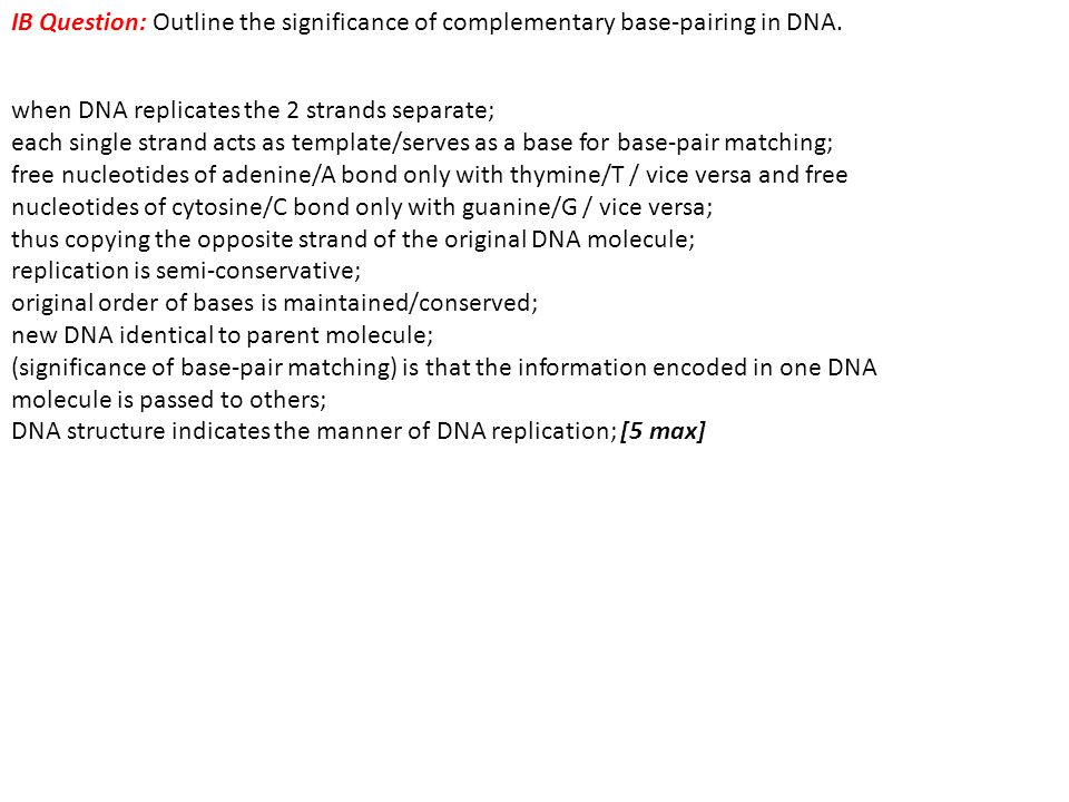 IB Question: Outline the significance of complementary base-pairing in DNA. when DNA replicates the 2 strands separate; each single strand acts as tem
