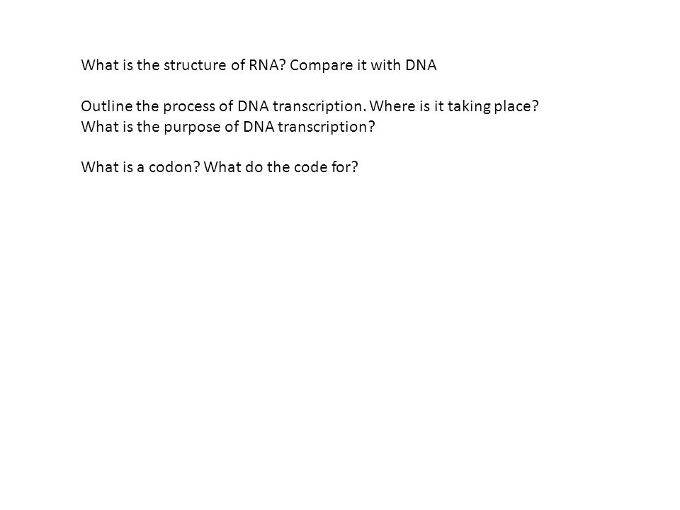 What is the structure of RNA? Compare it with DNA Outline the process of DNA transcription. Where is it taking place? What is the purpose of DNA trans