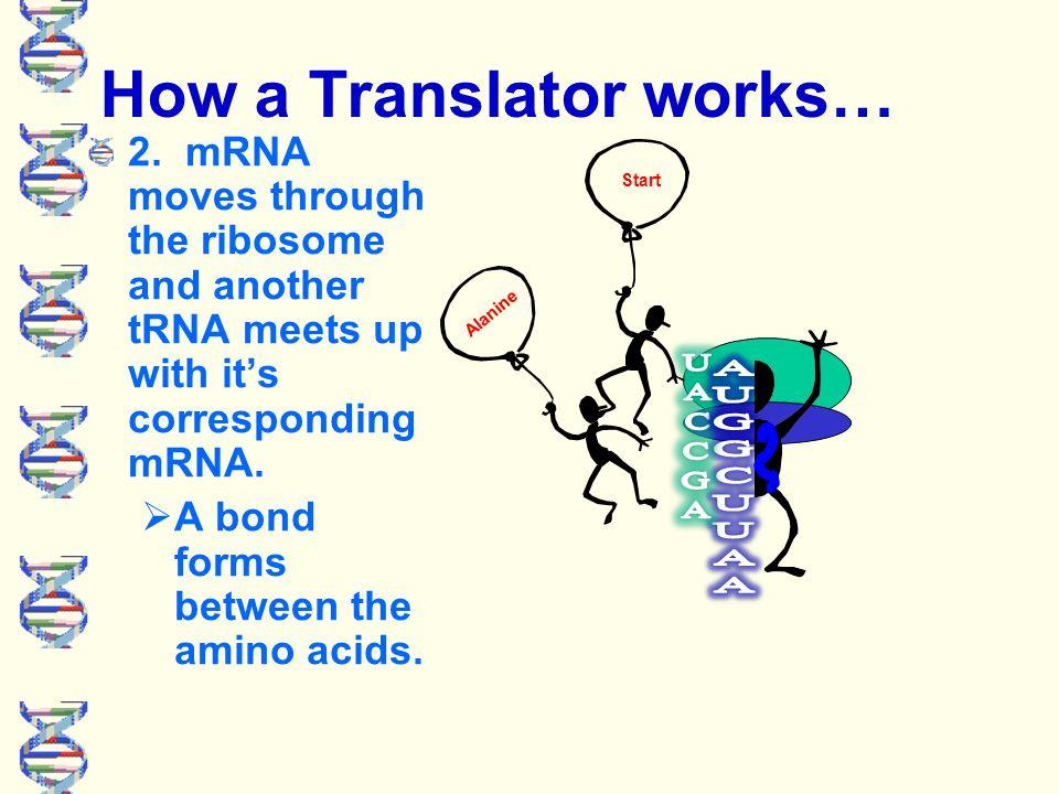How a Translator works… 1.